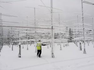 Antennparken rengörs
